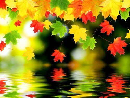 Artistic-autumn-wallpaper