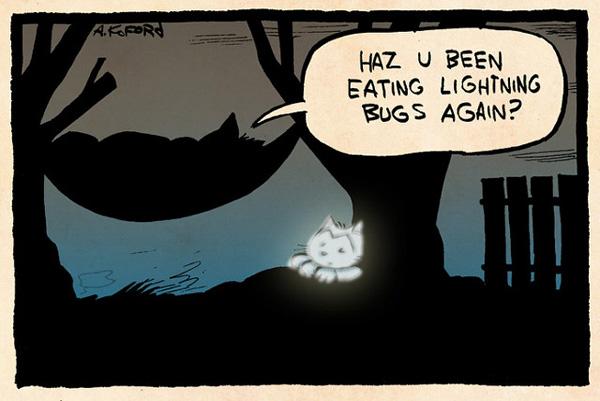 """""""Ai mâncat licurici din nou?"""". Imagine: Ape Lad"""